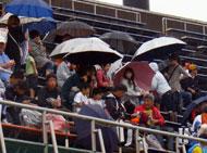雨の中傘を差して観戦