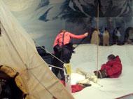 南極探検体験